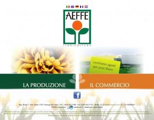 aeffefloricoltura